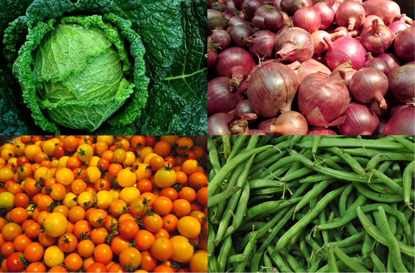 Wholesale | Lancaster Farm Fresh