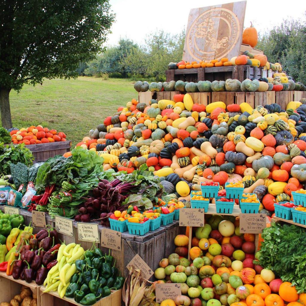 Fall Harvest CSA
