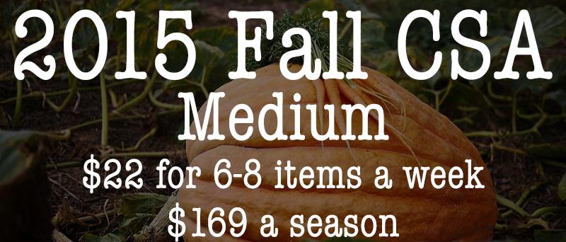Fall CSA Medium