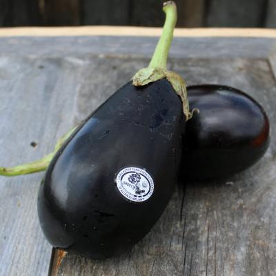 Organic Eggplant