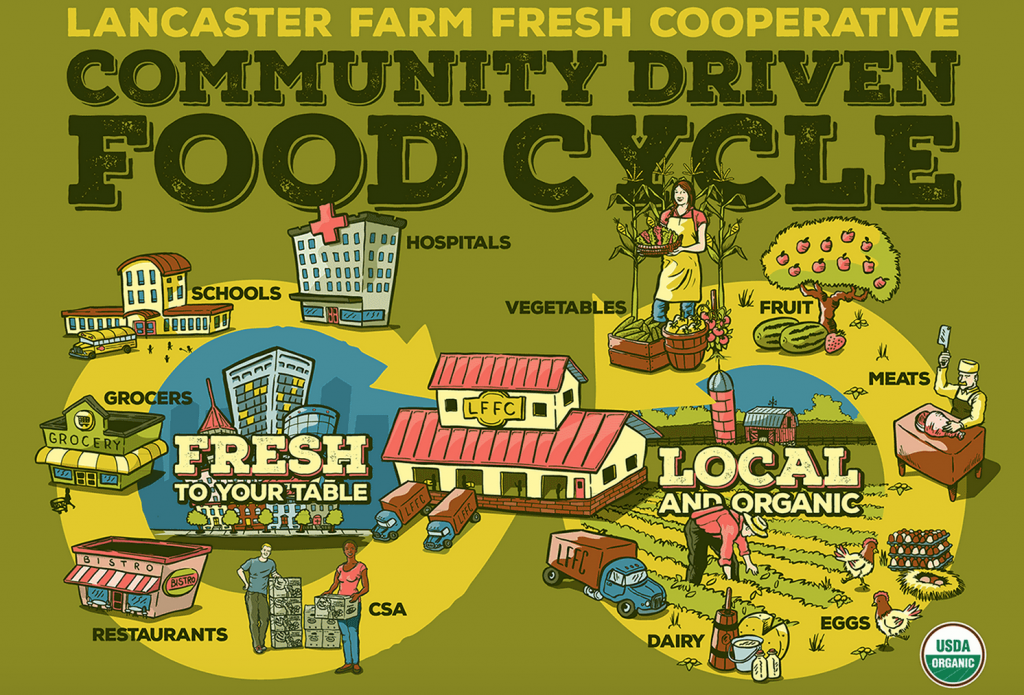 CSA food cycle