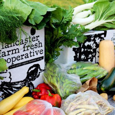 Organic CSA Shares 2016