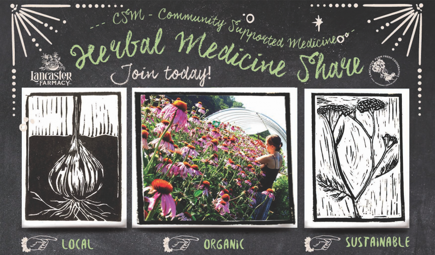Herbal Medicine Share | CSM: Community Supported Medicine