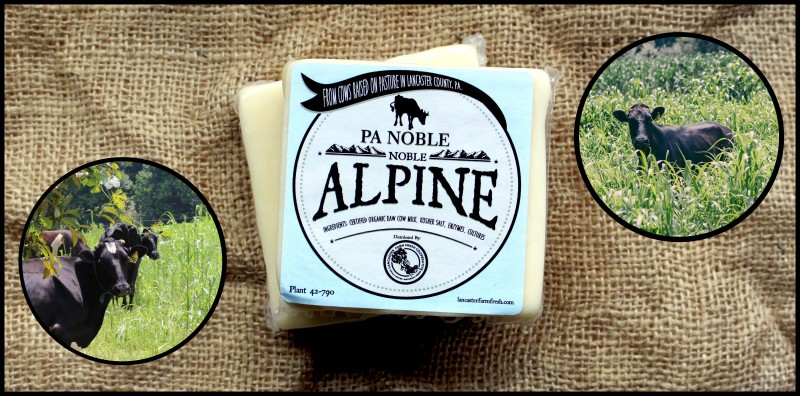 PA Noble Alpine Cheese