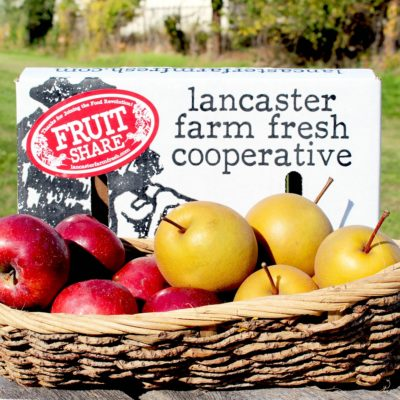 Organic Food Delivery Lancaster Pa